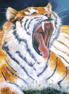 gleny tigre
